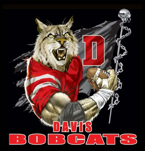 bobcats football flag tee - 6, 36 Tee