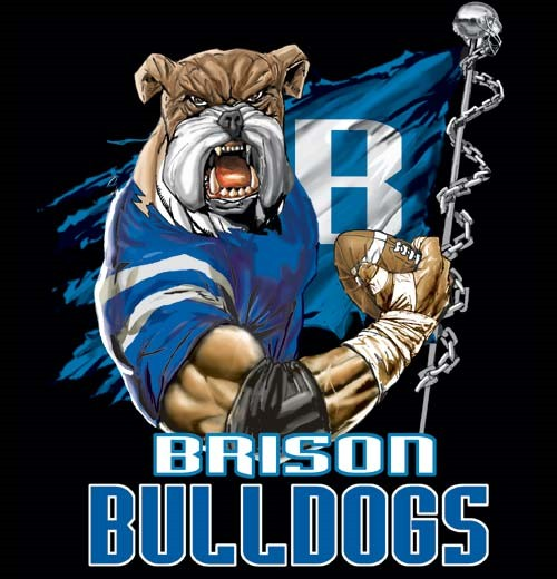 bulldogs football flag tee - 6, 36 Tee