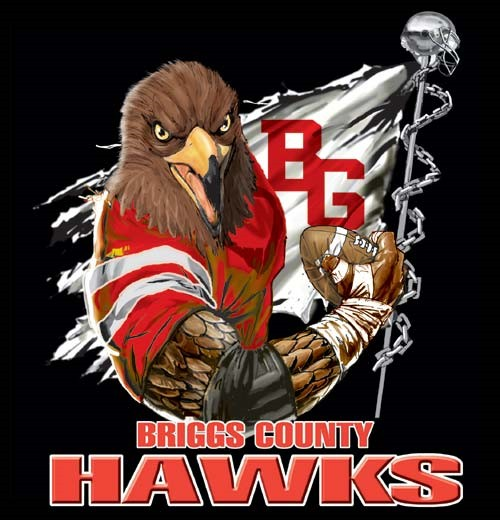 hawks football flag tee - 6, 36 Tee
