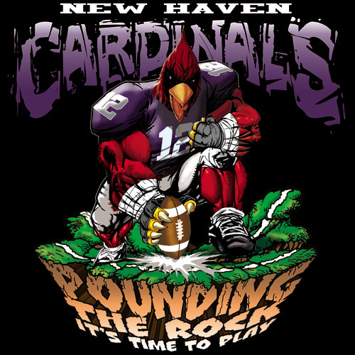 cardinals pounding the rock tshirt - 6, 29 Tee