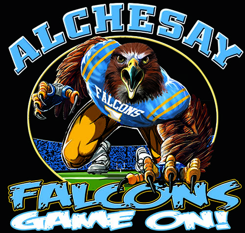 Falcoms Football Game On tee - 6, 64 Tee