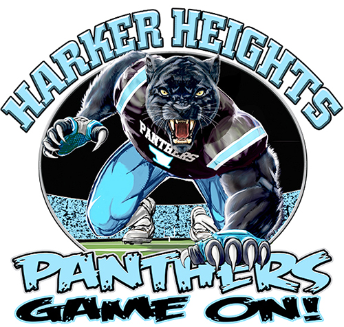 Panthers Football Game On tee - 6, 64 Tee